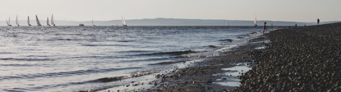 Gentle waves push sailboats along the horizon of beachfront in Seattle.