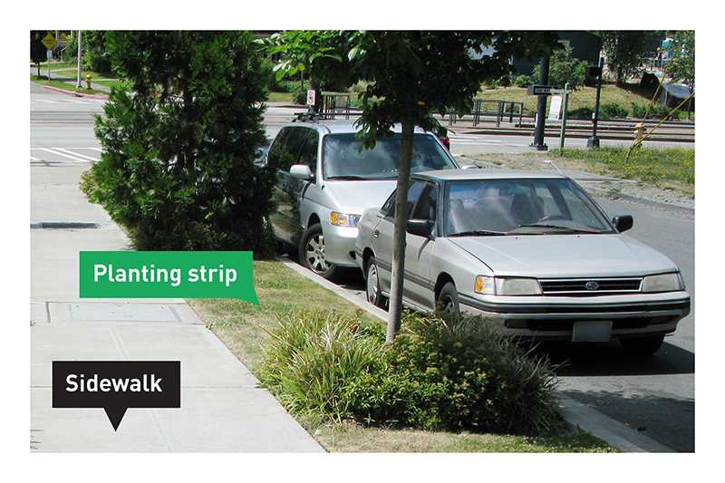 Planting in the Right-of-Way - Transportation | seattle gov