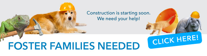 Construction is starting. We need your help.