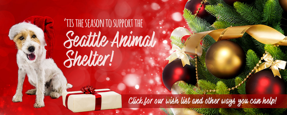 'Tis the season to support the Seattle Animal Shelter