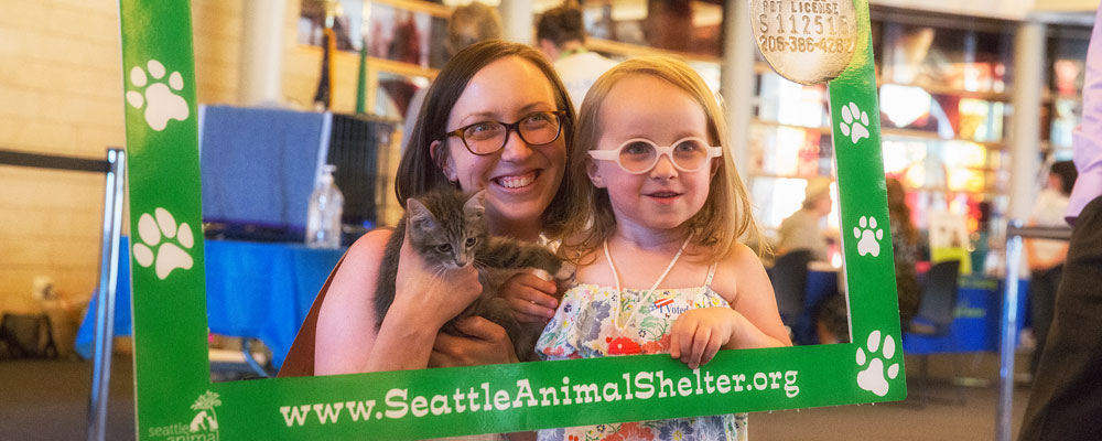 "Kittens abound at third annual ""Kitty Hall"""