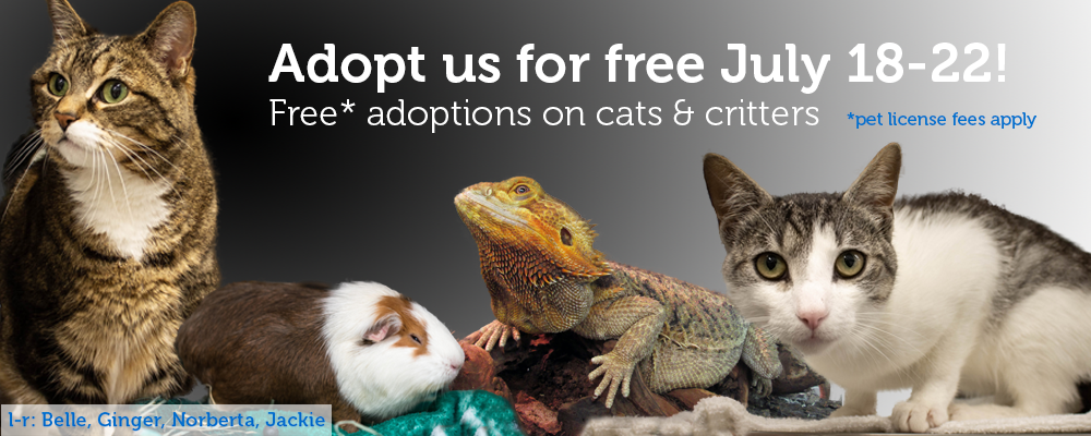 Cats and critters are free (licensing fees apply) July 18-22