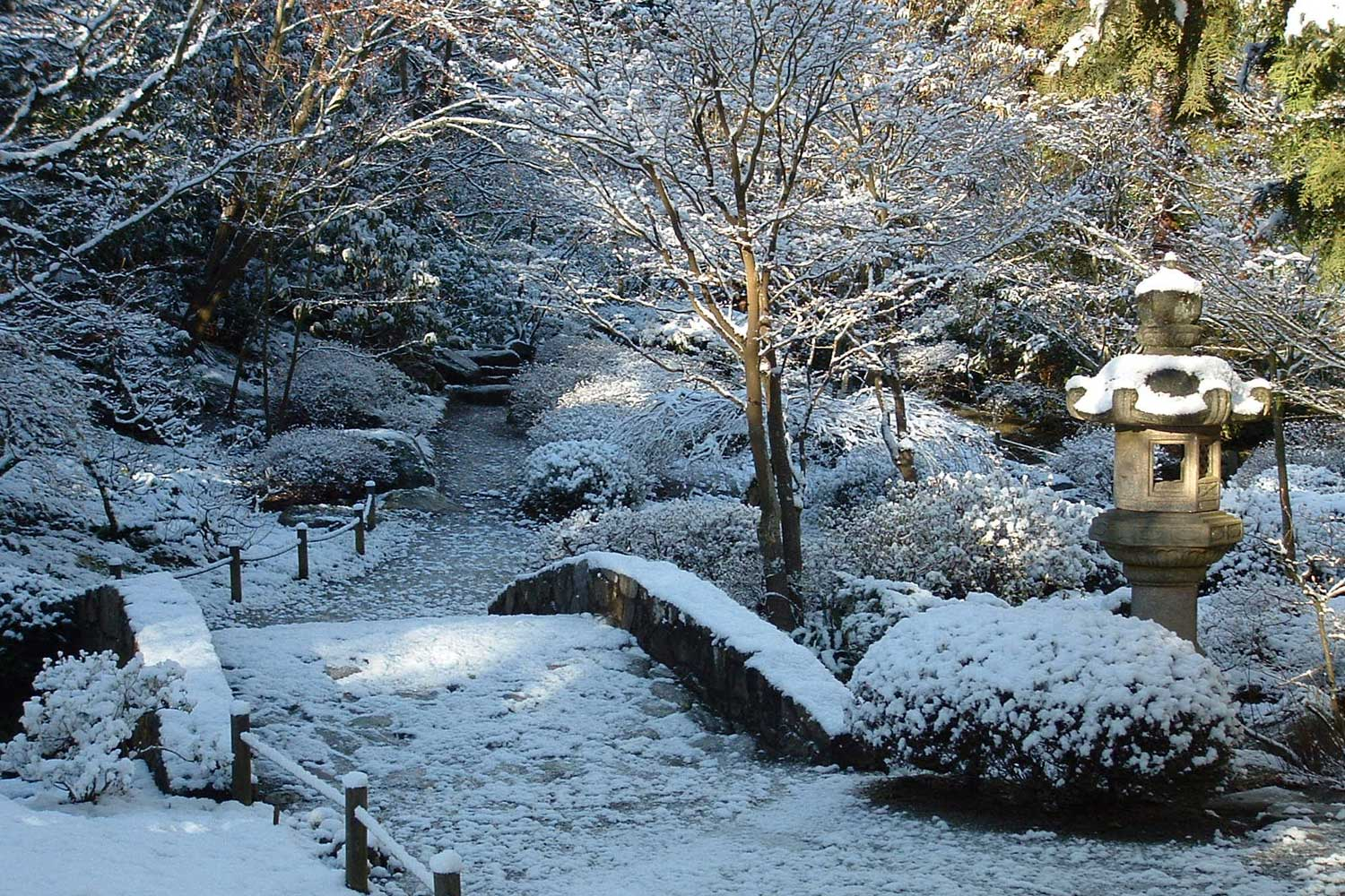 Japanese garden parks for Winter garden