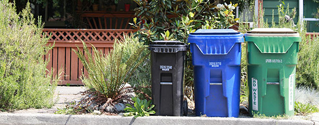 Photo of solid waste containers on curb