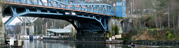 Fremont bridge and rower photo