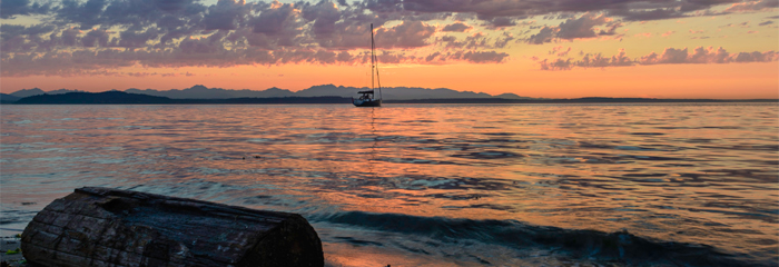 Dusk, sailboat, log photo