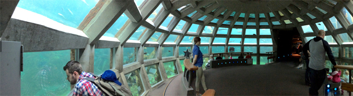 Seattle Aquarium viewing dome