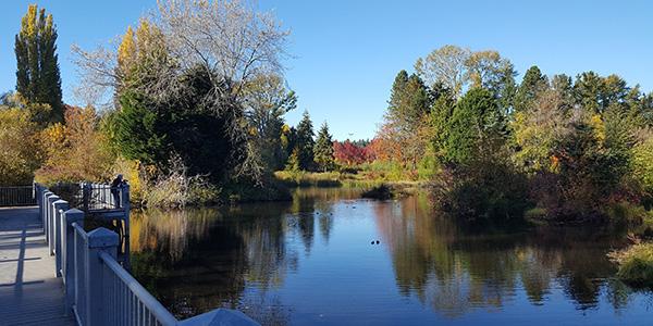 Meadowbrook Pond Facility Rehabilitation - Utilities   seattle.gov