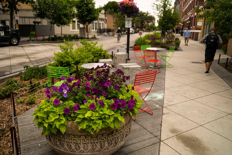 Bell Street Park Parks Seattle Gov