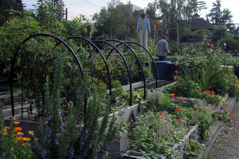 Bradner Gardens Park Planting Beds